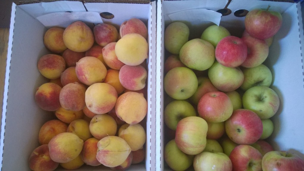 Peaches and Honey Crisp Apples